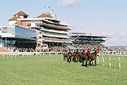 logo for Newbury Racecourse