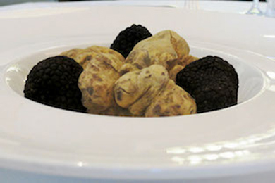 picture of truffles